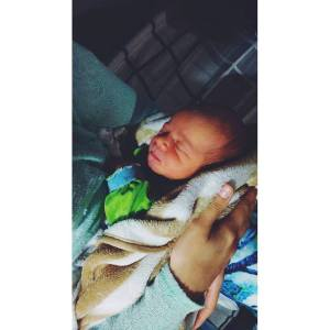 baby3 Noah